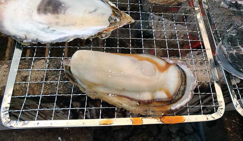 【牡蠣BBQ】ぷりぷり牡蠣を食べに行く会@日生